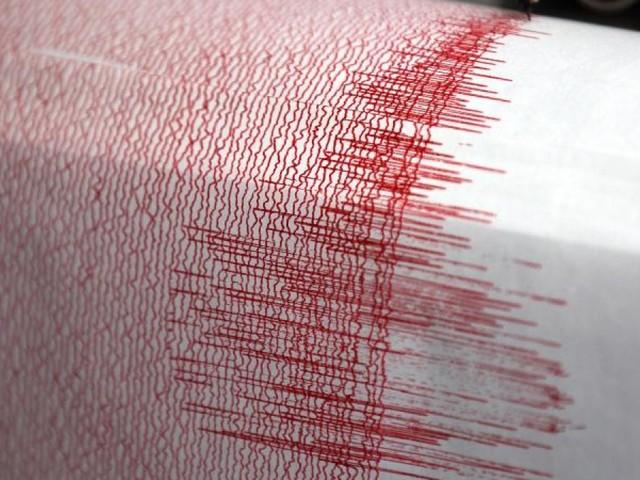 Erdbeben erschüttert Osttürkei: Mindestens vier Tote