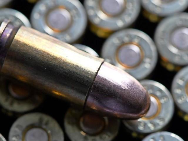 Saudi-Arabien: Auch Grüne gegen Aufnahme von Rüstungsexporten