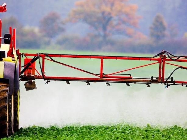 Gesundheit: Studie der Grünen: Aufregung um Pestizide im Haar