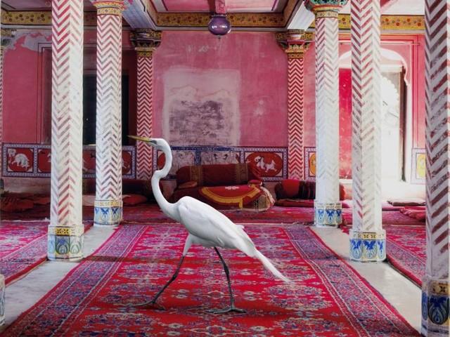 Ganz Baden wird ein Museum: Blickwinkel auf eine andere Welt