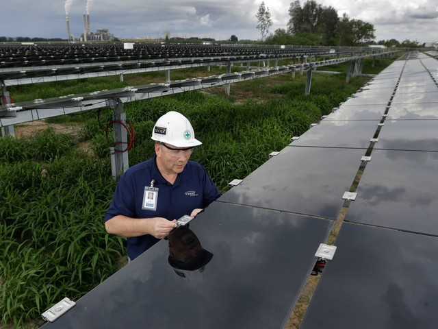Trump Administration Targets Imported Solar Panels for Huge Tariffs
