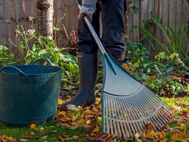 Erster Frost im Garten: 3 Dinge, die Sie vorher noch erledigen müssen