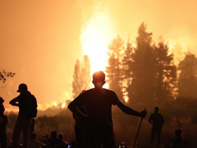 Waldbrände in Griechenland, der Türkei und Italien: Was Urlauber wissen müssen