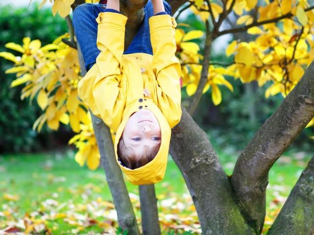 Herbst? Ferien! - Tipps für die schulfreie Woche
