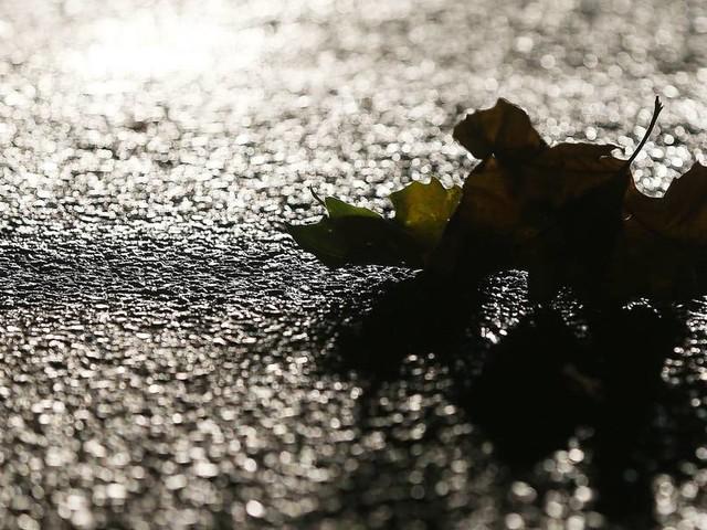 Vorsicht, glatte Straßen: Im Herbst hat das nicht nur mit Kälte zu tun