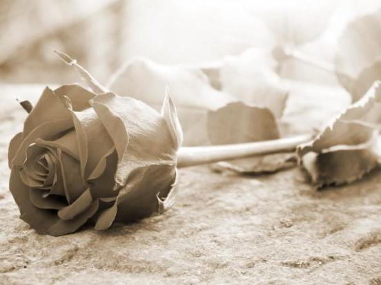 Philipp Mickenbecker: Details zur Beerdigung bekannt! So verabschieden sich die Freunde des YouTubers