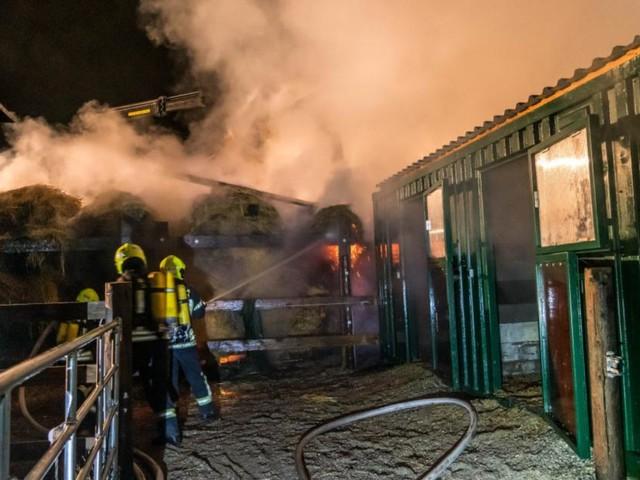 Serienbrandstifter: Verdächtiger ist wieder ein Feuerwehrmann