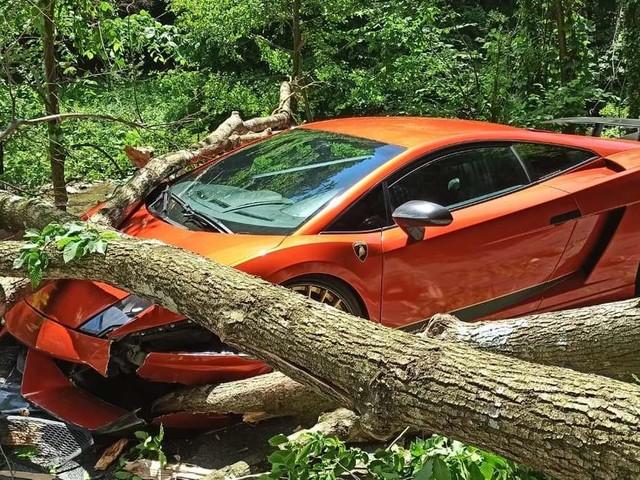 Bäume machen Lamborghini platt – darum hat der Luxus-Flitzer jetzt ein Problem