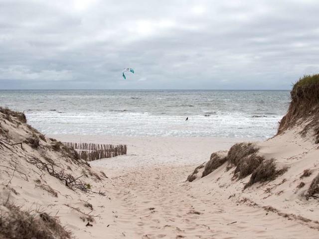 """""""Monster""""-Fund auf Sylt schockiert Nordsee-Urlauber: """"Baden werde ich wohl einstellen"""""""