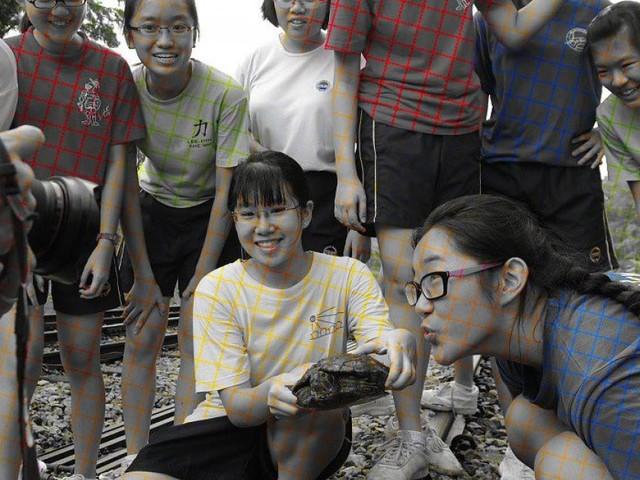 Optische Täuschung: Das Netz staunt über dieses Schwarz-Weiß-Foto