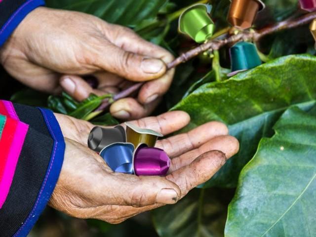 Kolumbianische Kaffeekapselernte von Dürre bedroht