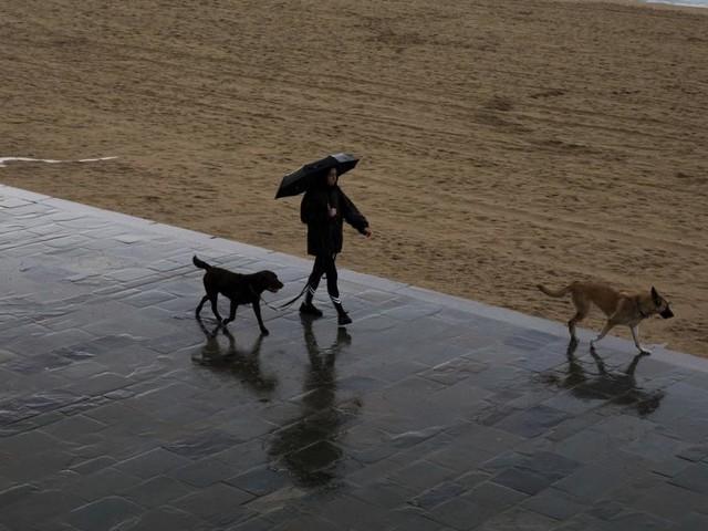 Unwetter auf Mallorca: Mehrere Tote und rund 20 Vermisste