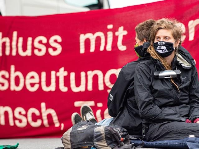 Tönnies: Aktivisten besetzen Schlachthof