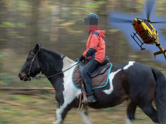 Grausame Szenen bei Turnier: Pferd stürzt bei Siegerehrung auf Mädchen (7) - tot