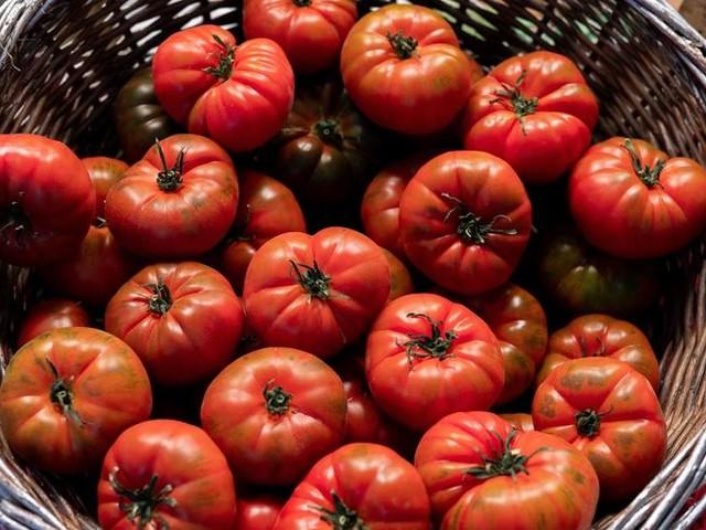Nur Saft und Suppe: Kann man mit der Tomaten-Diät abnehmen?
