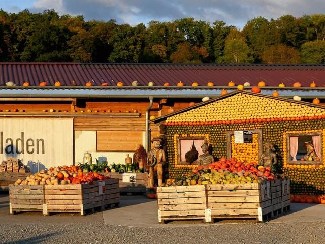 Digitalisierung in der Agrarbranche: Vom Feld ins Netz