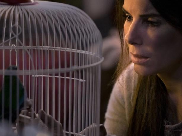 """Netflix will reale Katastrophenaufnahmen nicht aus """"Bird Box"""" streichen"""