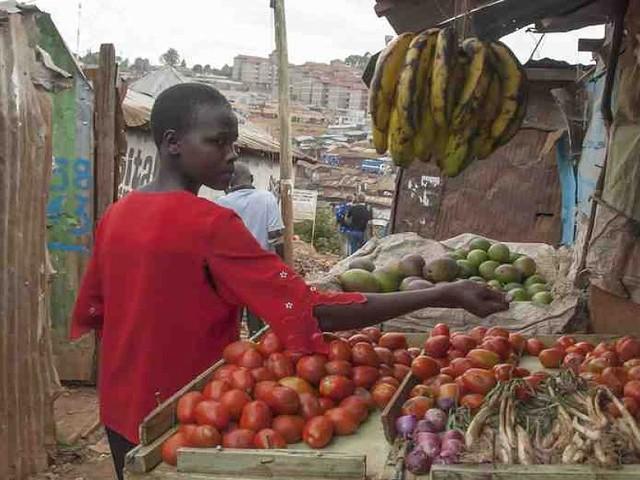 - Kenia: Tomaten auf der Blockchain im Kampf gegen Armut