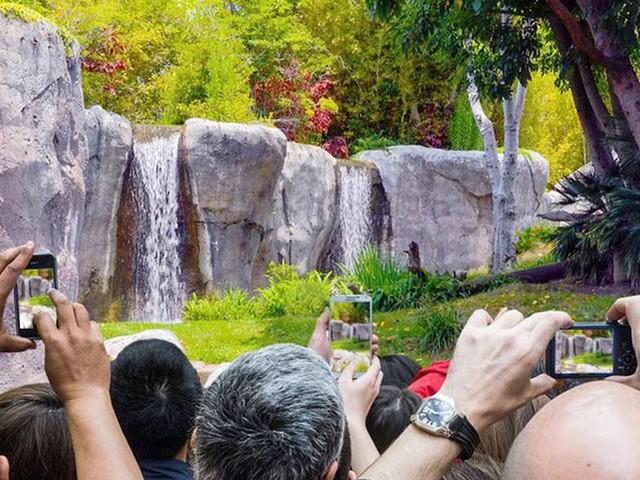 Keine Tiere: Erster veganer Zoo lockt tausende Besucher an