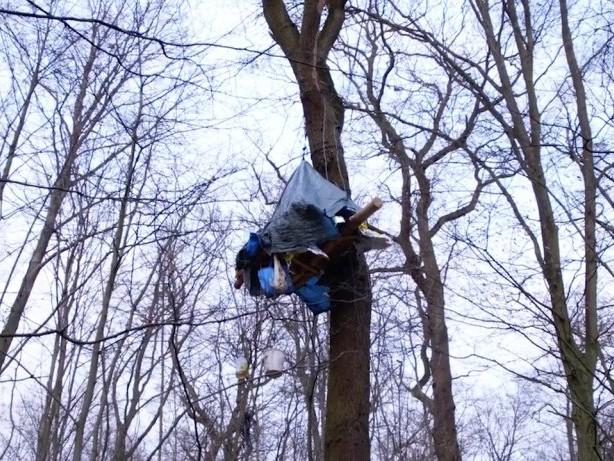 Hambacher Forst: So leben die Aktivisten im Wald