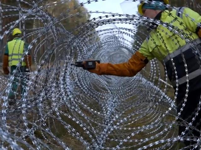 Litauen baut meterhohen Zaun an der Grenze zu Belarus