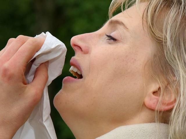 Heuschnupfen: Diese Pollen fliegen zurzeit durch die Luft