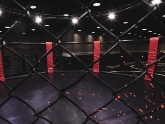 Alexander Volkanovski vs. Brian Ortega: Volkanovski verteidigt Titel im Federgewicht beim UFC 266 - Blaydes siegt