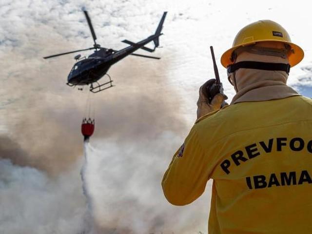 Dekret erlassen - Bolsonaro schickt Armee zur Bekämpfung von Waldbränden in Amazonasgebiet