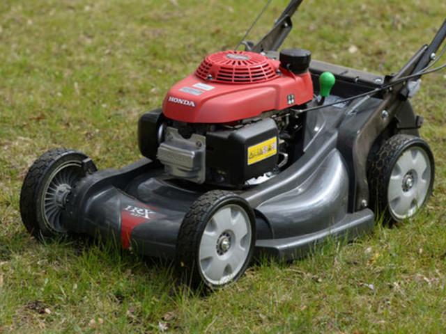 Achtung! Diese Fehler schaden Ihrem Rasen