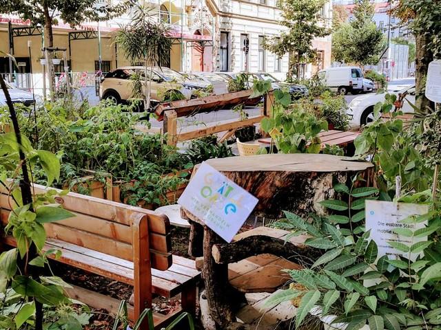Ottakring: Wie aus einem Parkplatz ein Urwald wurde