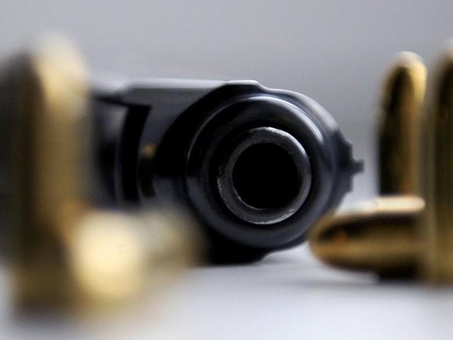 """Nach Frauenmorden: Grüne wollen Zugang zu Waffen """"drastisch einschränken"""""""