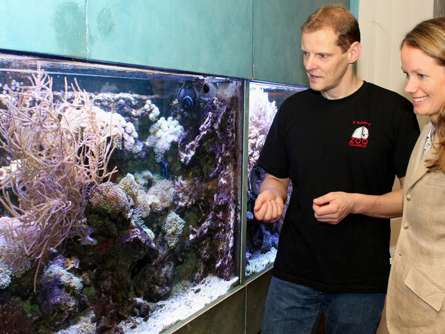 Zoo Osnabrück: Neue Fische nach Umbau des Tetra-Aquariums