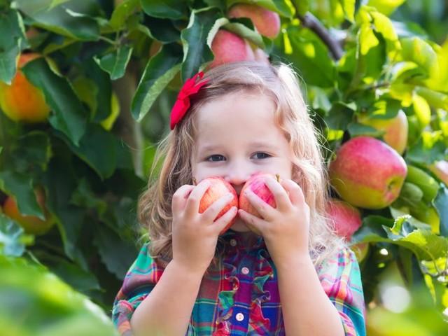 Simpler Trick: Wie man Kinder dazu bringt, mehr Obst und Gemüse zu essen
