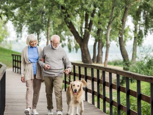 Ein gesunder Lebensstil schützt vor Demenz – selbst bei genetischer Veranlagung