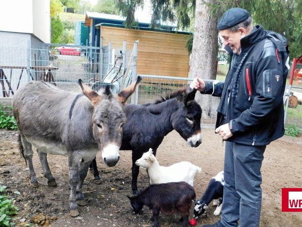 """Ambulant Betreutes Wohnen: """"Ohl-Ranch"""" zeigt Wirkung: Tierpflege lindert seelische Not"""