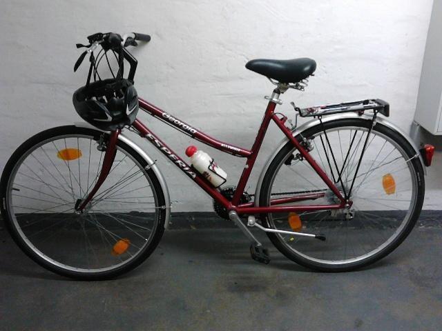 "28 er Damen Fahrrad "" Esperia Georgia 7000 "" (21 Gang) sofort Fahrbereit in Siegen (Universitätsstadt) Kaan-Marienborn"
