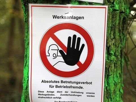 BUND-Eilantrag angenommen: OVG Münster stoppt Rodung im Hambacher Forst