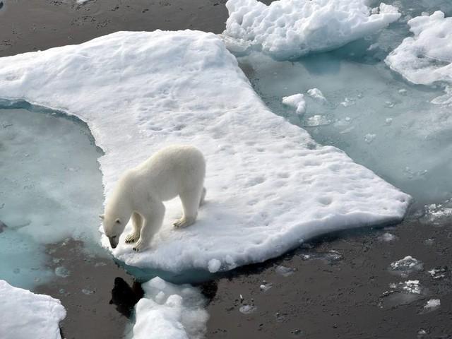 Studie: Klimawandel wird teuer für Deutschland und andere G20-Staaten
