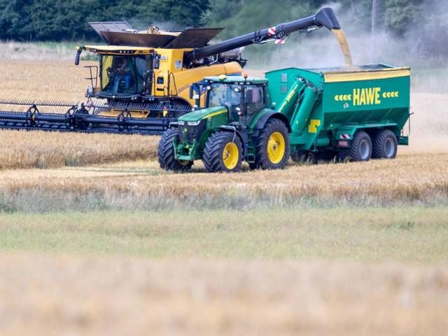 Landwirtschaftszählung: Mehr als Drittel der Betriebe sind Teil einer Unternehmensgruppe