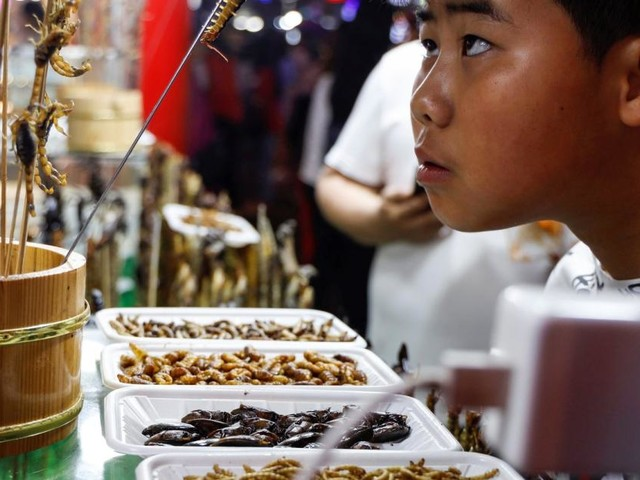 Spinnen, Egel, Skorpione: Was auf chinesischen Märkten verkauft wird