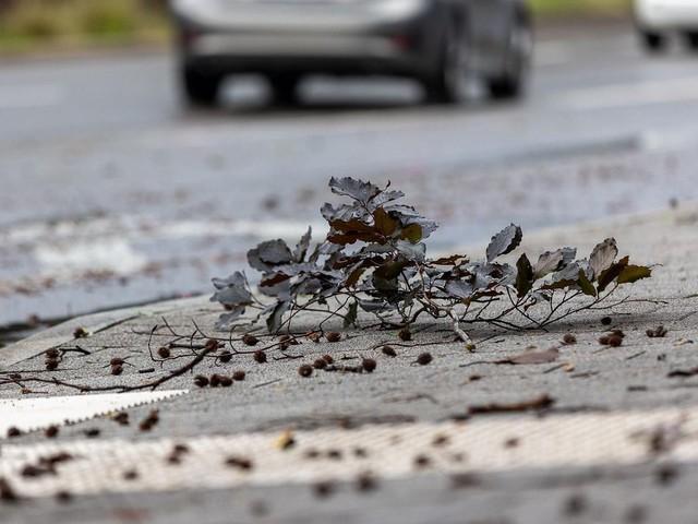 Reutlingen: Tennisballgroße Hagelkörner: Fünf Verletzte durch Unwetter