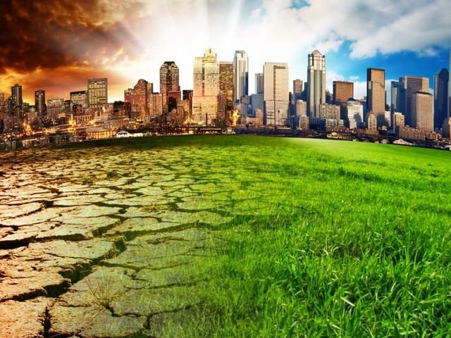 Klimakrise: Enorme Schäden für die Landwirtschaft