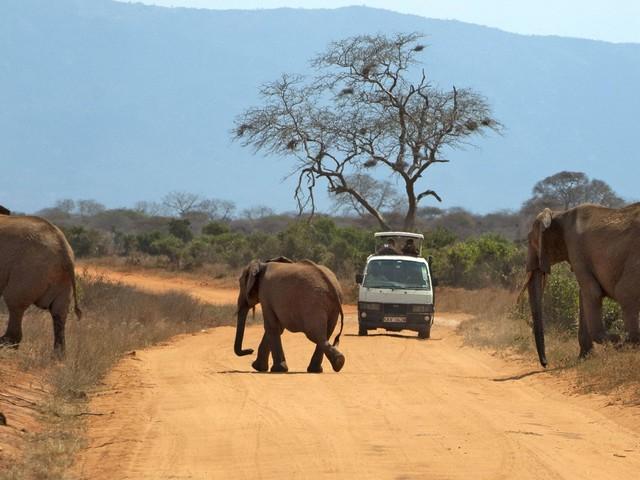 Auf nach Afrika: Diese Fernreisen sind im Herbst 2021 möglich