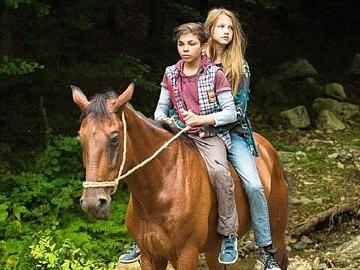 Wilde Verfolgungsjagd durch Transsilvanien