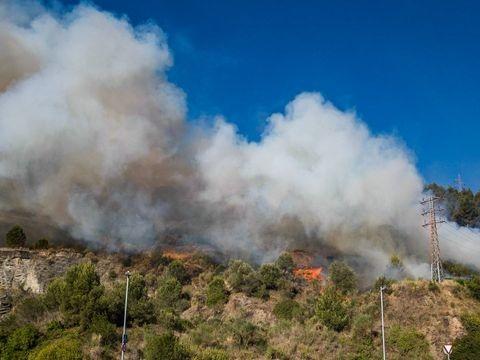 Katalonien: Waldbrand westlich von Barcelona außer Kontrolle