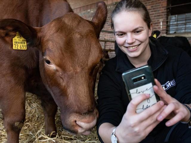 """Aufklärung aus der Agrarbranche: """"Tinder für Rinder"""" und #Blechporn: Influencer zeigen Schönheit und Bedeutung der Landwirtschaft"""
