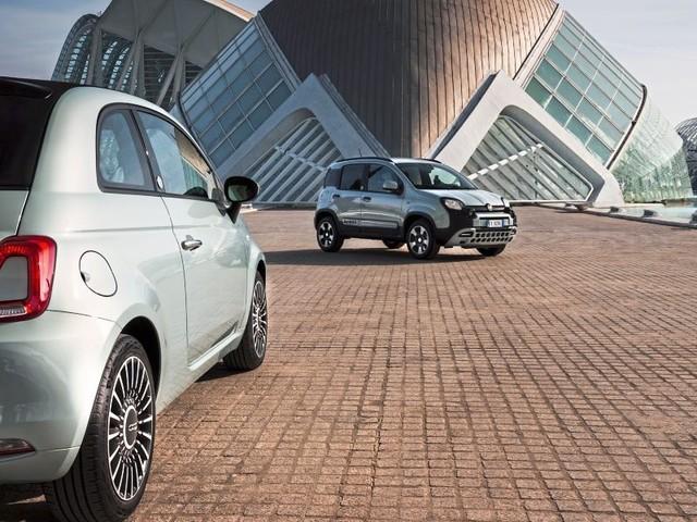 Fiat 500 & Panda: Da herrscht durchaus Spannung an Bord