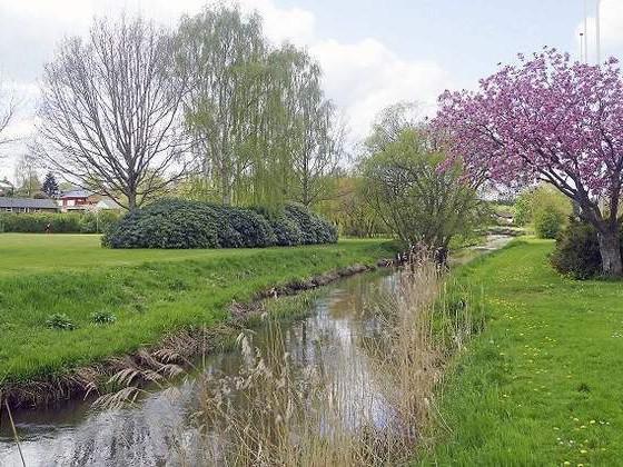 Ved åen: I år bliver der hele 38 Stones by the River