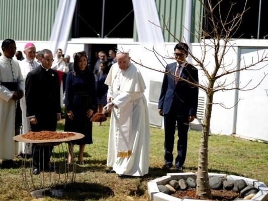 Madagascar: cri d'alarme du pape sur la déforestation