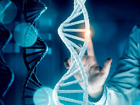 Maladies génétiques et intelligence artificielle : une approche innovatrice